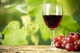 Red wine glass and bunch of grapes on wooden table against vineyard in summer
