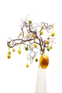 easter eggs hanging from hazel branch isolated on white