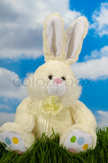 Easter bunny is sitting on green grass, with blue and cloudy sky in the background