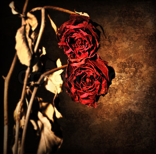 Grunge wilted roses over abstract dark old wallpaper background, floral red border with dried out flowers, retro vintage style photo, death concept