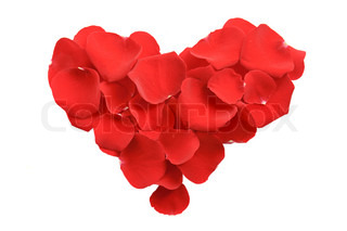 Heart shape from red rose petals isolated on white