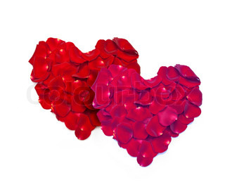 Heart shape made out of rose petals isolated on white