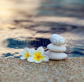 White stones and white plumeria near water in wimming pool