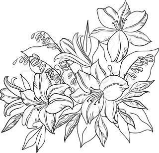 Flowers and leaves lily and mine, vector, monochrome contours
