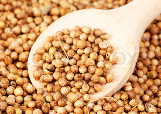 Aromatic coriander seeds and woodspoon as food background