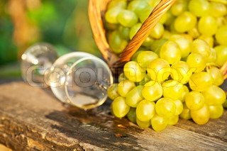 Poured wine glass and bunch of white grapes in basket against natural spring background