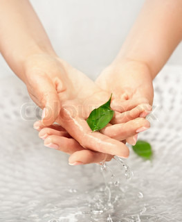 Woman's hands with green leaf in water above the sink