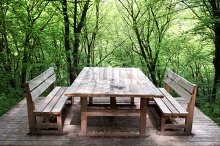 Wooden table and two benches on a background of green wood