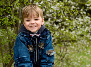 The spring, wood, the little boy, smile