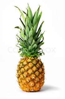 Fresh pineapple fruit isolated