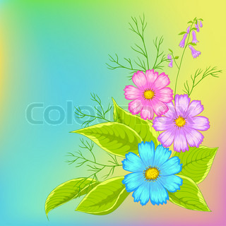 Flower background, cosmos flowers on green and yellow