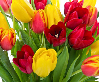 Bouquet with yellow and red tulips