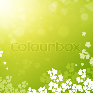Spring or summer background with flowers silhouette, copyspace for your text