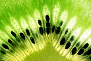 macro photo of kiwi fruit