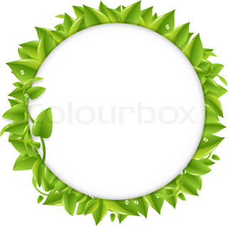 Circle With Green Leafs, Isolated On White Background, Vector Illustration