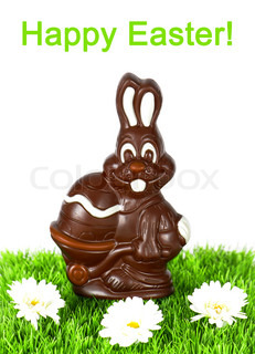 chocolate easter bunny with daisy flowers on green grass