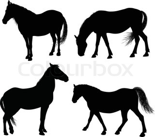 Detailed horse silhouettes collection 7000x6329