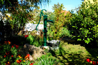 Summer Garden with Old Fashioned Water Pump