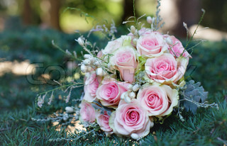 rose bride bouquet on the pine