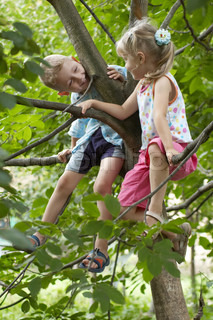 Children sitting on a branch