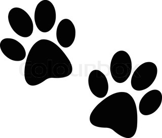 Paw prints pair