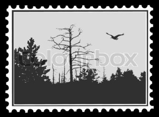 silhouette of the bird on postage stamps,