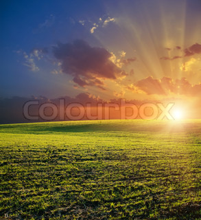 agricultural green field and red sunset