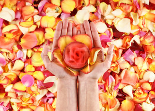 Beautiful hands with the flower petals