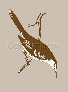 thrush silhouette on brownbackground, vector illustration