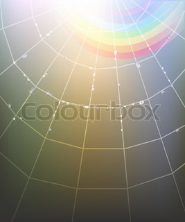 Background with spider web, rainbow and transparent shining water drops.