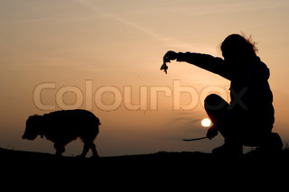 play with the dog in sunset