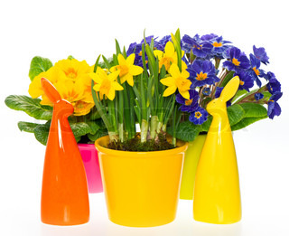 spring flowers with easter bunnydecoration