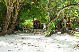 Beach villas and nature scene in Maldives