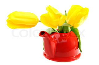 Yellow tulips in red teapot