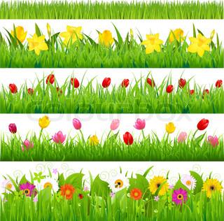 Flower Borders Set