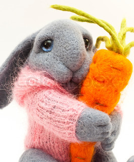 Toy rabbit with carrot