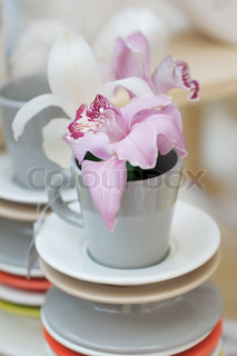 Delicious pink lily in cup arranged for sale