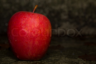 Red apple on the ground