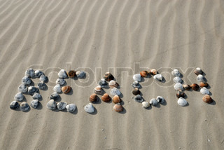 The word beach written into the sand with seashells