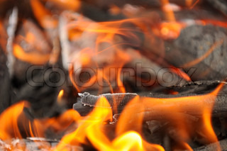Burning Wood Embers with Flames