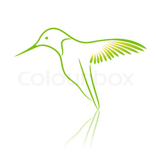 Logo bird. Hummingbird.