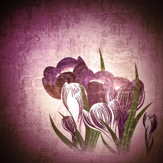 Vintage floral background with crocus