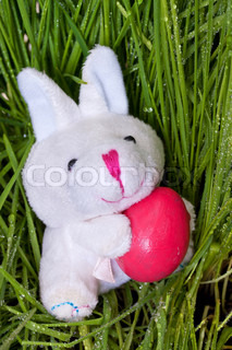 Bunny holding an Easter egg