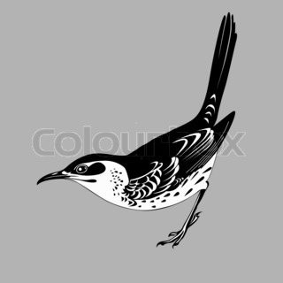 thrush silhouette on graybackground