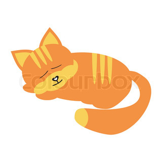 sleeping cat on white background
