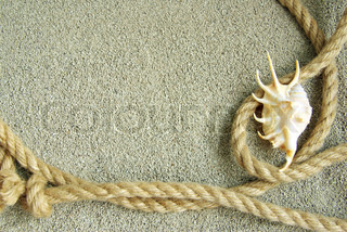 shells in rope