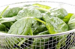 young fresh spinach in a metal sieve after washing