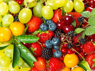 fresh colorful fruits and berries