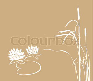water lily and reed on brown background