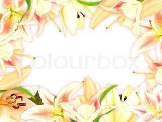 Floral frame with lily flowers and green leaf